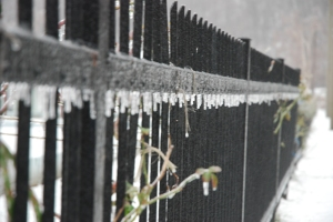 frozen_fence